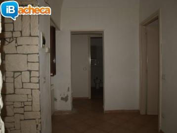 Immagine 2 - Appartamento con Cortile