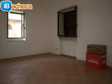 Immagine 3 - Appartamento con Cortile