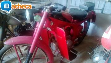 Immagine 2 - Moto Caproni Capriolo