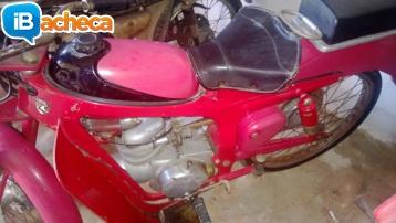 Immagine 3 - Moto Caproni Capriolo