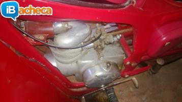 Immagine 4 - Moto Caproni Capriolo