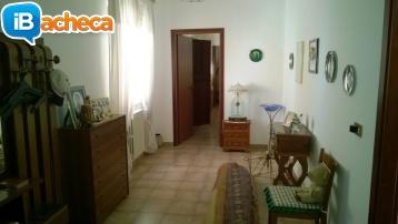 Immagine 3 - Casa autonoma a cassano