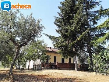 Immagine 2 - Casale a Maroglio