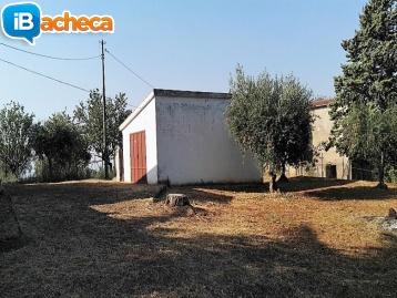 Immagine 5 - Casale a Maroglio